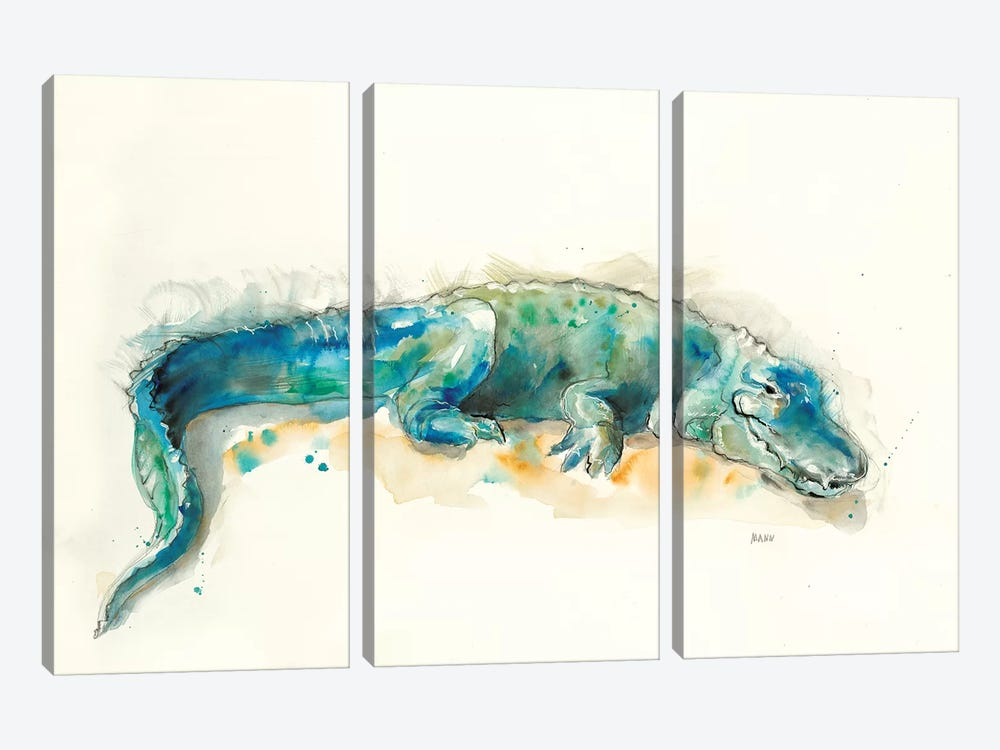 Alligator by Patti Mann 3-piece Art Print