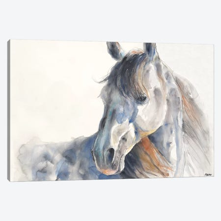 Looking Back Canvas Print #PTM1} by Patti Mann Canvas Print