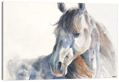 Looking Back Canvas Art Print