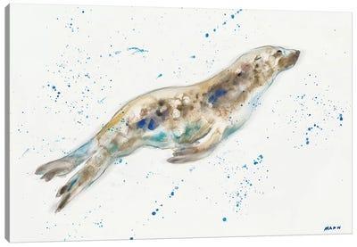 Seal Canvas Art Print