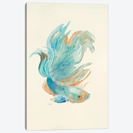 Betta I Canvas Print #PTM3} by Patti Mann Art Print