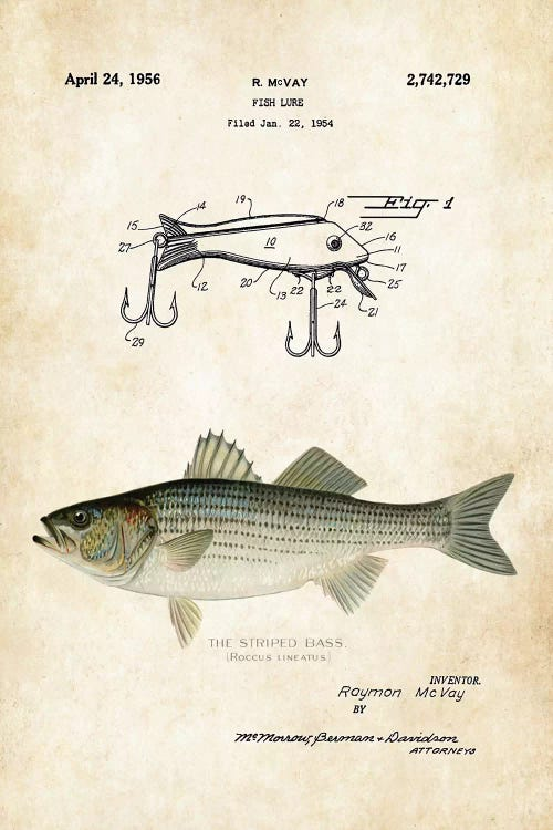 Striped Bass Fishing Lure Canvas Art Print By Patent77 Icanvas