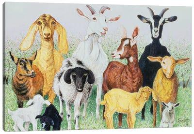 In Clover Canvas Art Print