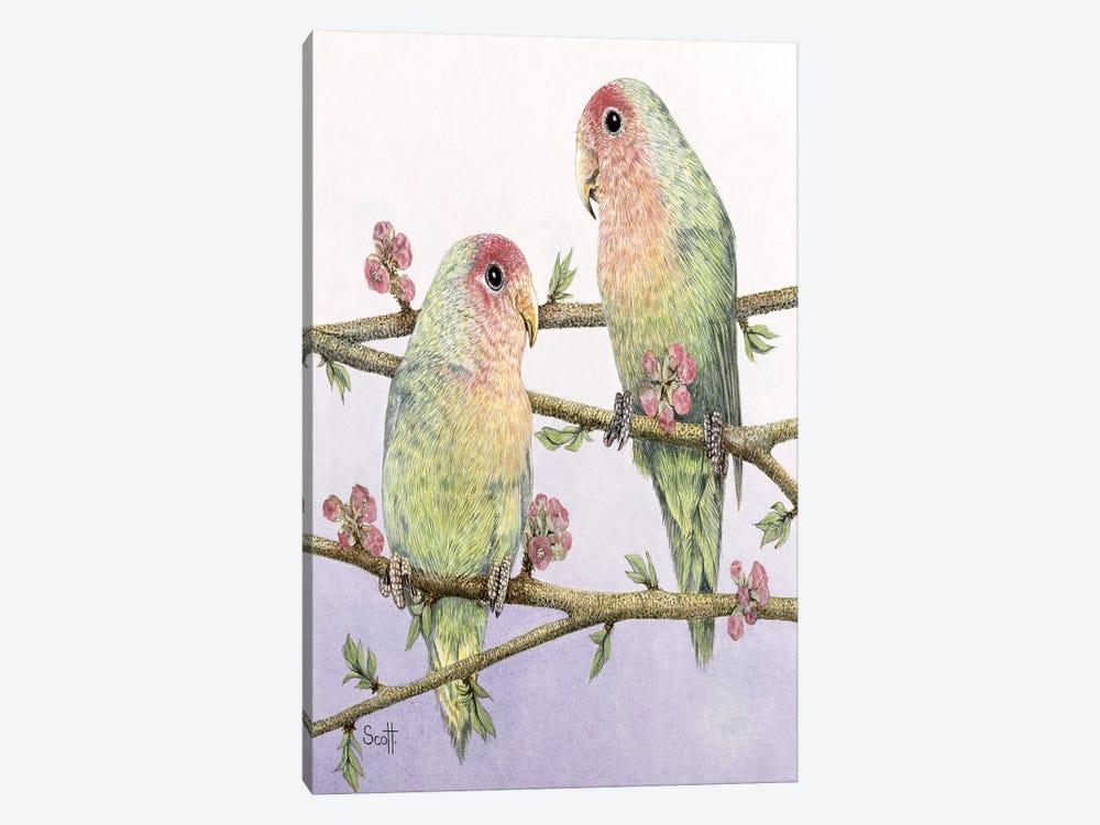 Love Birds by Pat Scott 1-piece Canvas Print