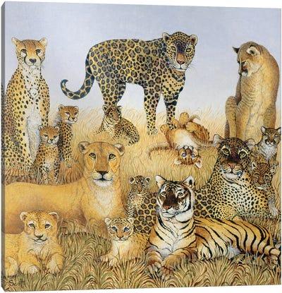 The Big Cats Canvas Art Print