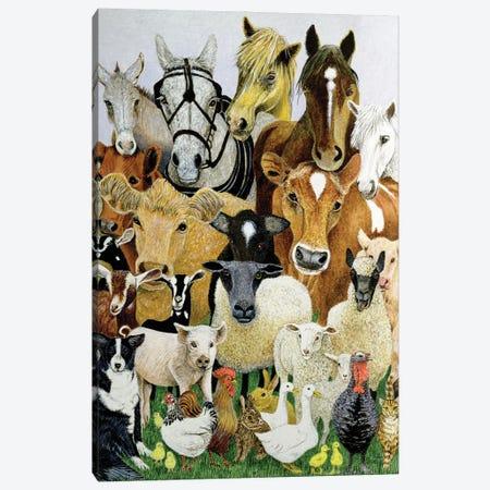Animal Allsorts Canvas Print #PTS5} by Pat Scott Canvas Art Print