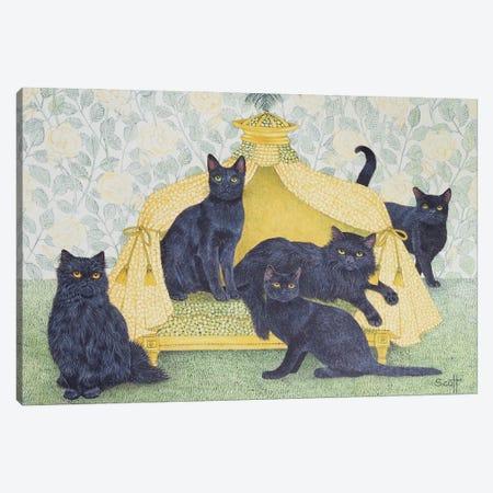 Black Velvet Canvas Print #PTS7} by Pat Scott Canvas Art Print
