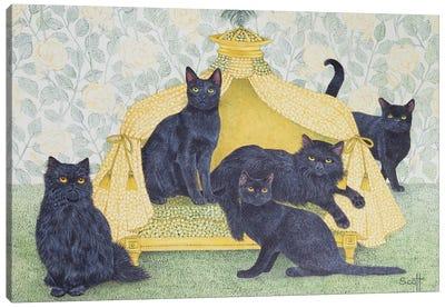 Black Velvet Canvas Art Print