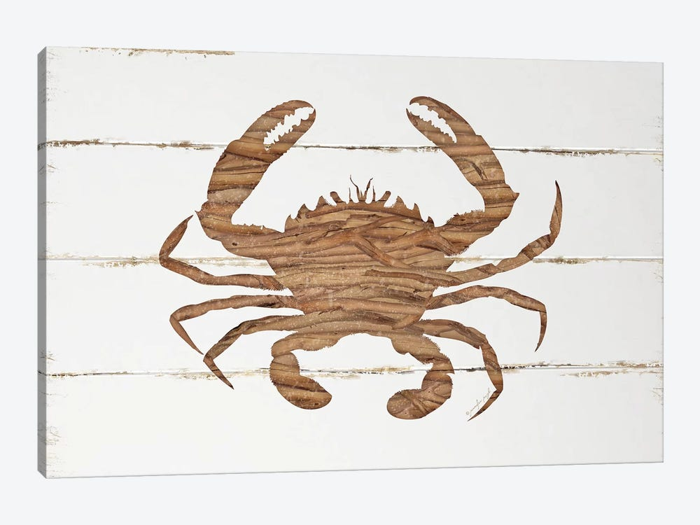 Driftwood Crab by Jennifer Pugh 1-piece Canvas Wall Art