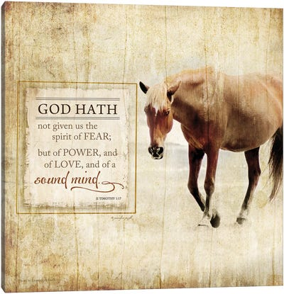 God Hath Not Given Canvas Art Print