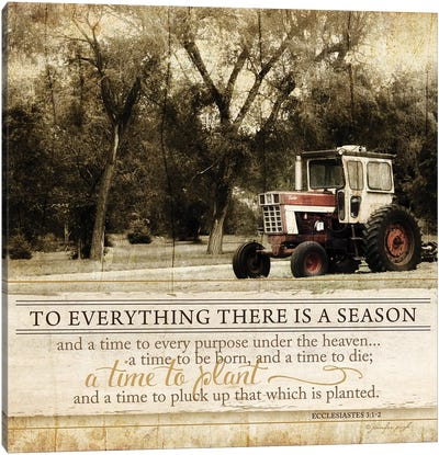 To Everything There Is A Season Canvas Art Print