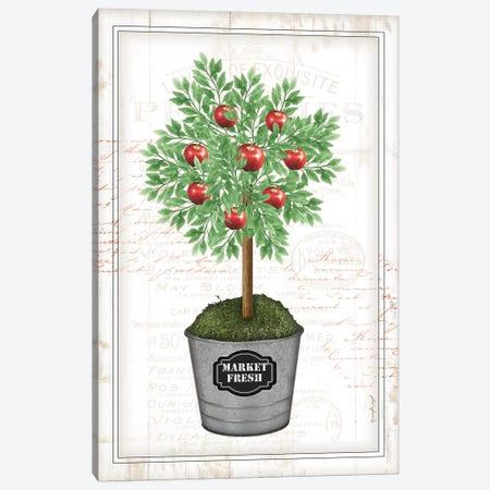 Apple Topiary I Canvas Print #PUG53} by Jennifer Pugh Canvas Wall Art