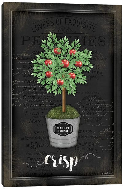 Apple Topiary II Canvas Art Print