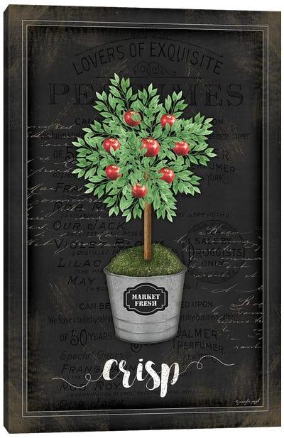 Apple Topiary II Canvas Art Print