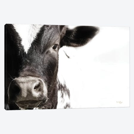 Cow VII Canvas Print #PUG59} by Jennifer Pugh Canvas Artwork
