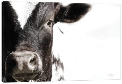 Cow VII Canvas Art Print