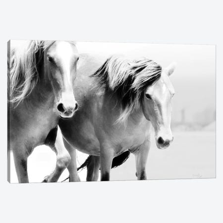 Horse II Canvas Print #PUG66} by Jennifer Pugh Canvas Art