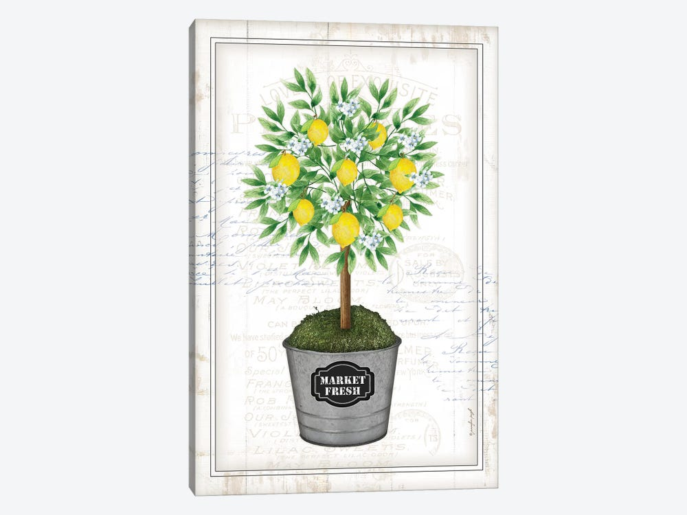 Lemon Topiary I by Jennifer Pugh 1-piece Canvas Print