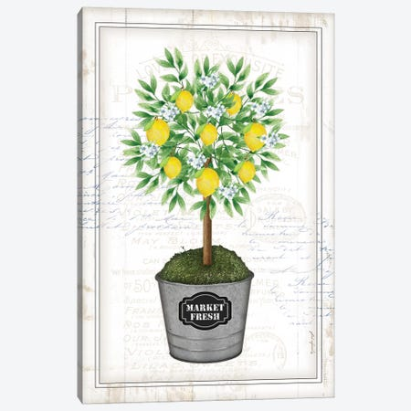 Lemon Topiary I Canvas Print #PUG71} by Jennifer Pugh Canvas Artwork