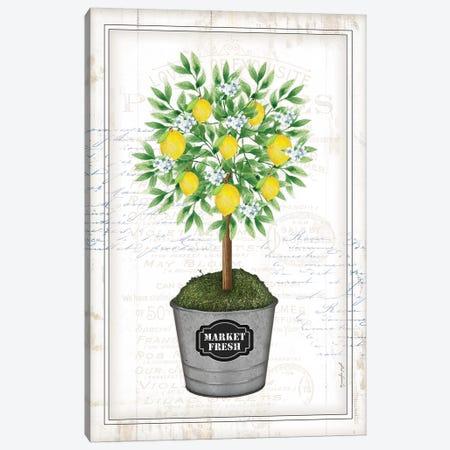 Lemon Topiary I Canvas Print #PUG71} by Jennifer Pugh Canvas Artwork
