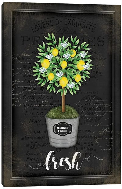 Lemon Topiary II Canvas Art Print