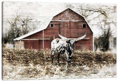 Longhorn I Canvas Art Print