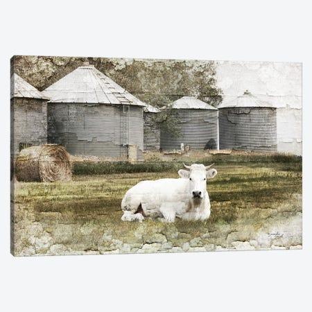 White Cow Canvas Print #PUG88} by Jennifer Pugh Canvas Print
