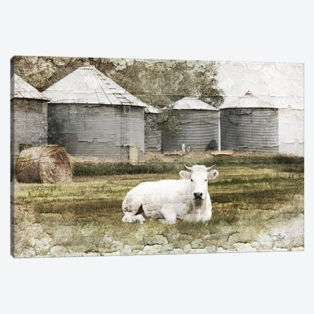 White Cow Canvas Print #PUG88} by Jennifer Pugh Canvas Print