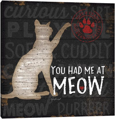 You Had Me At Meow Canvas Art Print