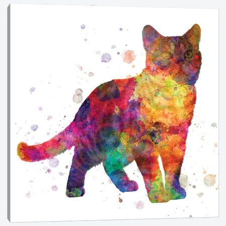 American Shorthair In Watercolor Canvas Print #PUR1189} by Paul Rommer Canvas Art Print