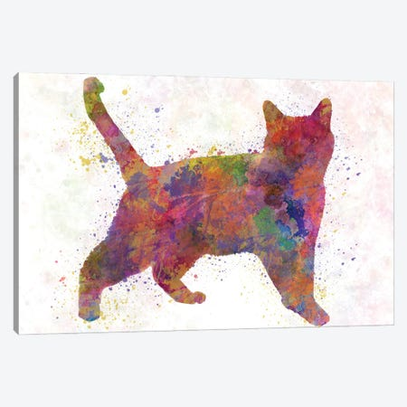 Russian Blue In Watercolor Canvas Print #PUR1212} by Paul Rommer Art Print