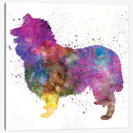 Collie In Watercolor Canvas Print #PUR146} by Paul Rommer Canvas Artwork