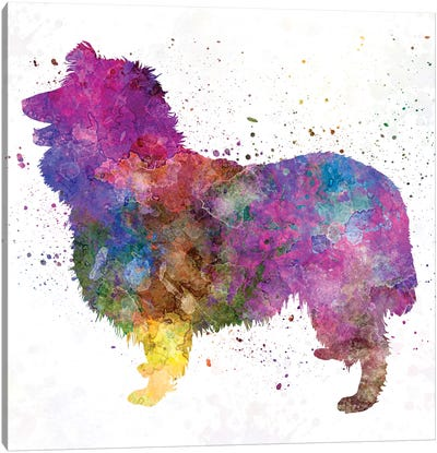 Collie In Watercolor Canvas Art Print