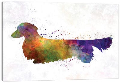 Dachshund Long Haired In Watercolor Canvas Art Print