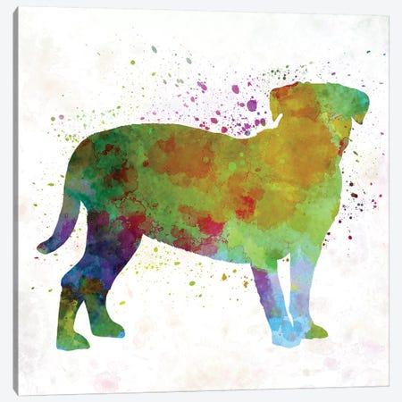 Dogo De Bordeaux In Watercolor Canvas Print #PUR206} by Paul Rommer Canvas Print