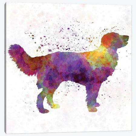 Drentsche Partridge Dog In Watercolor Canvas Print #PUR209} by Paul Rommer Canvas Art