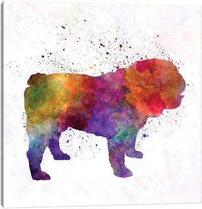 English Bulldog In Watercolor Canvas Art Print