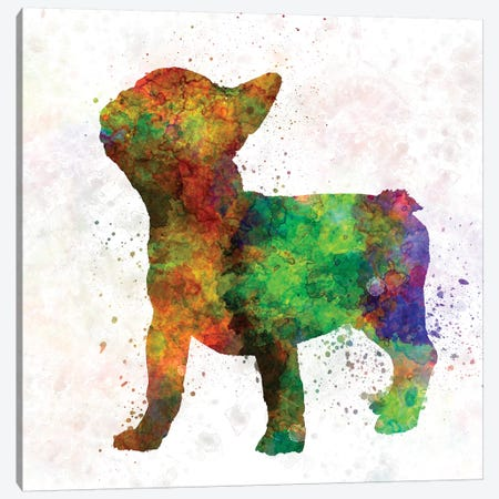 French Bulldog 01 Canvas Print #PUR259} by Paul Rommer Canvas Print