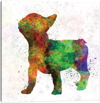 French Bulldog 01 Canvas Art Print