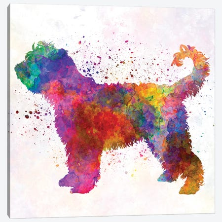 French Water Dog In Watercolor Canvas Print #PUR265} by Paul Rommer Canvas Art Print