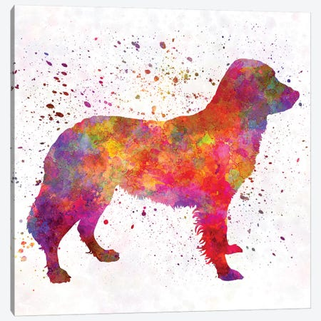 Frisian Pointer In Watercolor Canvas Print #PUR269} by Paul Rommer Canvas Artwork