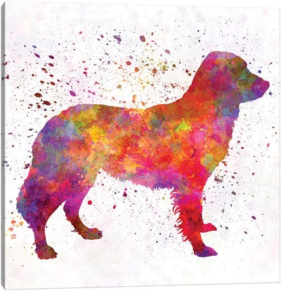 Frisian Pointer In Watercolor Canvas Art Print