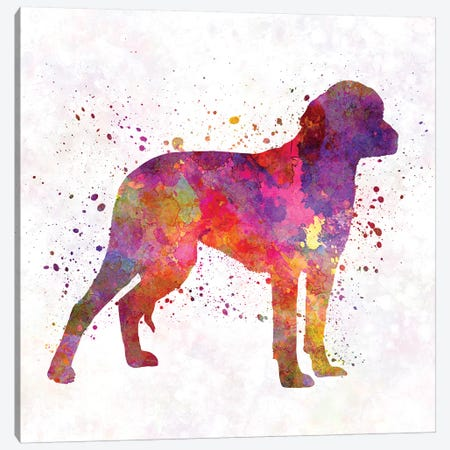 German Hound In Watercolor Canvas Print #PUR276} by Paul Rommer Canvas Artwork