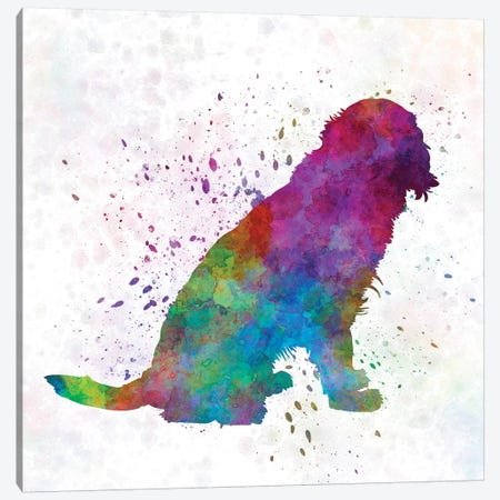 German Spaniel In Watercolor Canvas Print #PUR283} by Paul Rommer Canvas Wall Art
