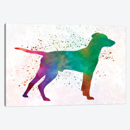Hellenic Hound In Watercolor Canvas Print #PUR328} by Paul Rommer Canvas Art Print