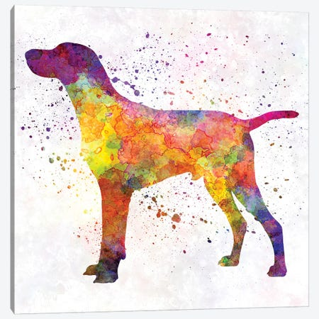 Hungarian Shorthaired Pointer In Watercolor Canvas Print #PUR355} by Paul Rommer Canvas Print