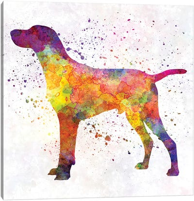 Hungarian Shorthaired Pointer In Watercolor Canvas Art Print