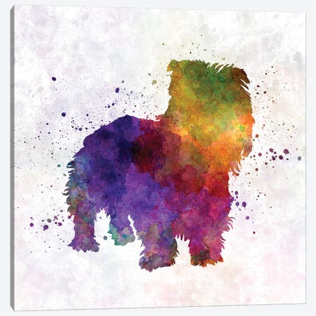 Irish Glen Of Imaal Terrier In Watercolor Canvas Print #PUR368} by Paul Rommer Canvas Print
