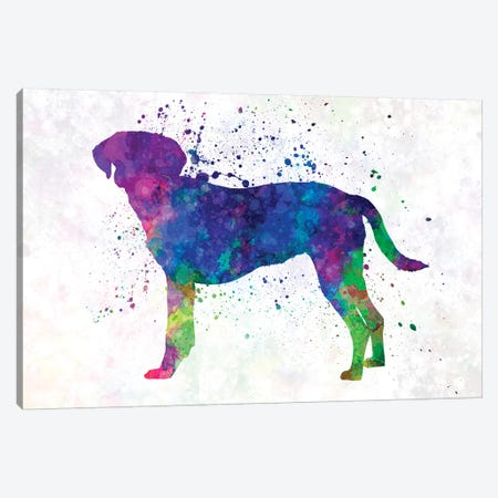 Istrian Scenthound In Watercolor Canvas Print #PUR376} by Paul Rommer Canvas Print