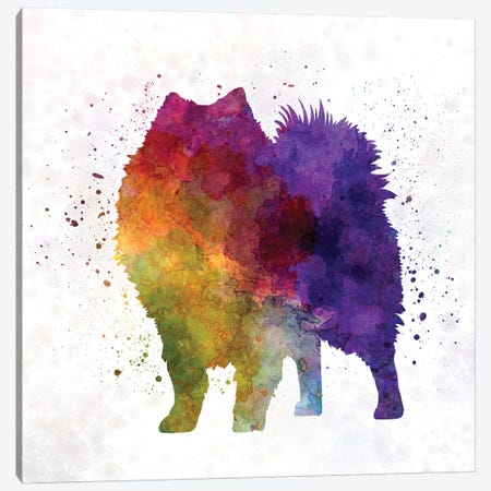 Japanese Spitz In Watercolor Canvas Print #PUR385} by Paul Rommer Canvas Wall Art